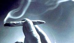 Drogen im Koffer - Polizei schnappt Heroin-Schmuggler