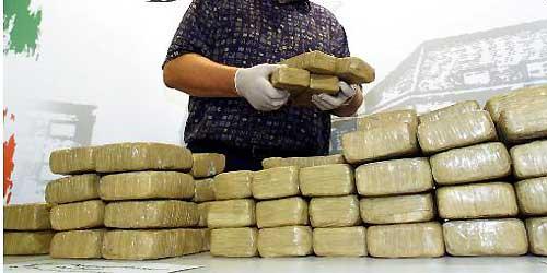 Polizei schnappt Schmugglerbande in Steyr-Land
