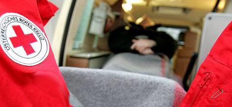 Mit Auto gegen Schlossmauer gekracht (Bild: APA)