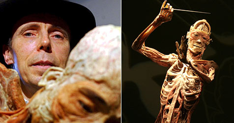 """""""Körperwelten""""-Schöpfer will Leichen verkaufen (Bild: AFP)"""