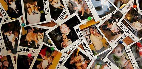 Wiener arbeitet am Comeback des Polaroids