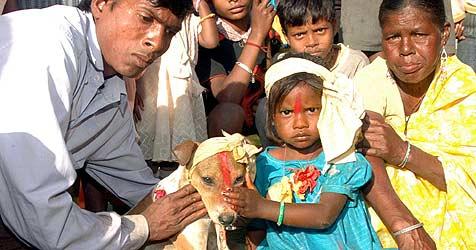 Indisches Mädchen heiratet Hund