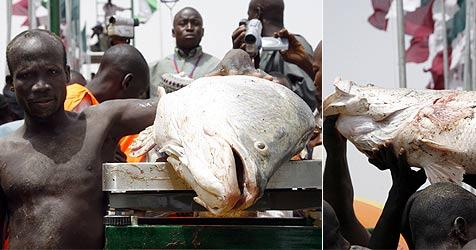 Angel-Wettkampf mit totem Fisch gewonnen (Bild: AFP)