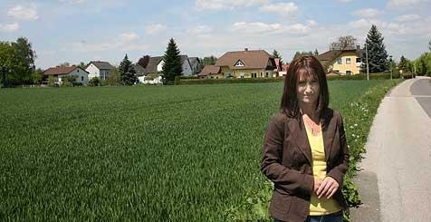 Lärmgeplagte Siedlung soll Umfahrung weichen (Bild: Horst Einöder)