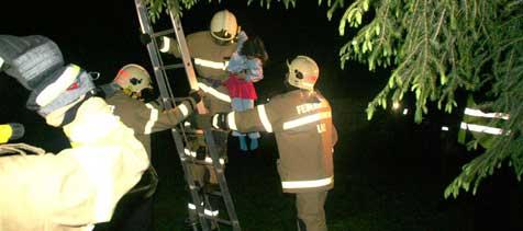 Linzer Feuerwehr rettete 17 Menschen vor Tod (Bild: BFW Linz)