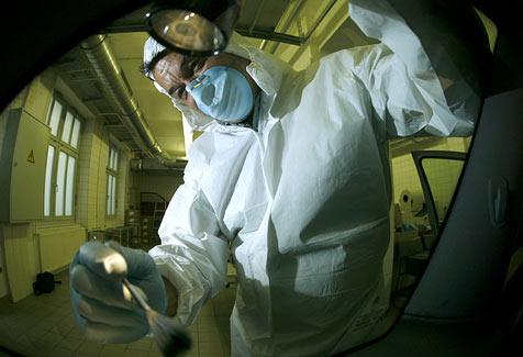 Verdächtiger liefert nun freiwillig DNA-Probe ab (Bild: APA)