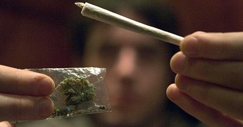 Drogenkonsument durch Geruch von Cannabis überführt (Bild: dpa/Friso Gentsch)