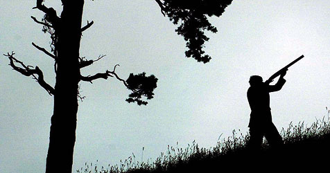 "Vermeintlicher ""Affe"" war Nachbarin (Bild: DAVID CHESKIN / dpa)"