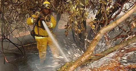 Yosemite-Br�nde zur H�lfte einged�mmt (Bild: ap)