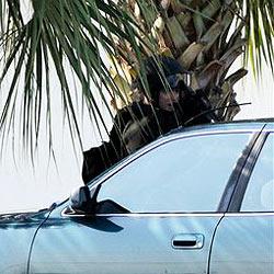 Omi fährt mit Enkel am Dach spazieren: Verhaftet