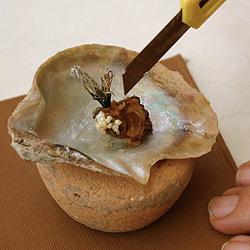 Libanesin findet 26 Perlen in einer einzigen Auster (Bild: AFP)