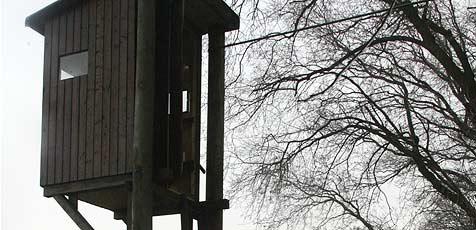 Jäger stürzt von Hochstand vier Meter in die Tiefe (Bild: ANDI SCHIEL)