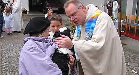 Linzer Pfarrer segnet Tiere per E-Mail (Bild: Diözese Linz)