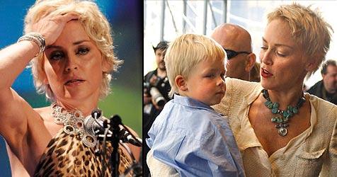 Sharon Stone verliert Sorgerechtsstreit