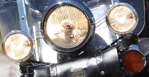 Rehbock bei Unfall mit Motorradfahrer zerfetzt (Bild: Peter Tomschi)