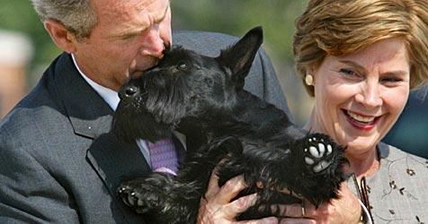 """Kölner Hund bekommt Liebesbrief von """"First Dog"""" (Bild: AP)"""