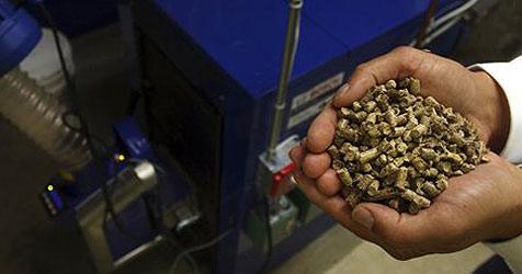 Pelletsofen-Erzeuger aus OÖ startet in den USA (Bild: AP)