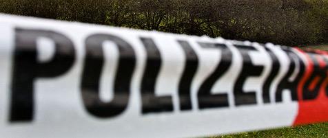 Arbeiter entdecken im Bezirk St. Pölten verstrahlte Knochen (Bild: dpa)