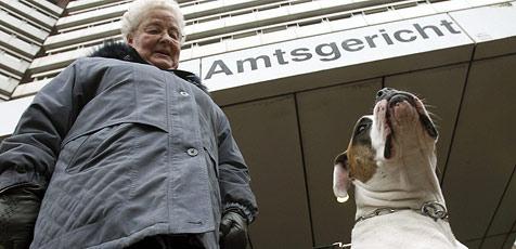 Hund muss ausziehen - trotz Auftritt vor Gericht (Bild: dpa)