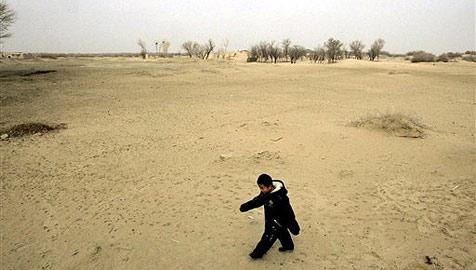 """Megabetrug in China: """"Nutzwald"""" war nur Wüste"""