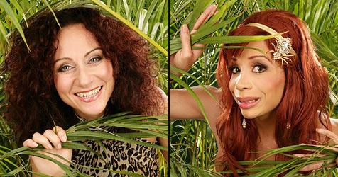 """Warum sich die """"Stars"""" das Dschungelcamp antun (Bild: RTL / Stefan Gregorowius)"""