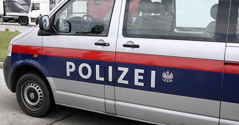 Polizei warnt: Erneut Keller in St. Pölten ausgeräumt (Bild: APA/Robert Jaeger)