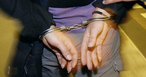 Vier Diebe wegen 50 Delikten verhaftet (Bild: dpa/A3749 Steffen Kugler)