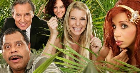 Das ultimative Quiz zur Dschungelshow! (Bild: RTL)