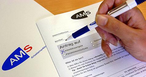 Fast 20 Prozent mehr Arbeitslose als im Dezember 08 (Bild: APA/Barbara Gindl)