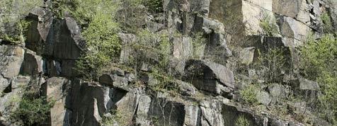 Steinbruch: Bischof will friedliche Lösung (Bild: APA/HARALD SCHNEIDER)