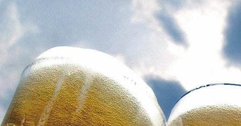 Drei Prozent Umsatzsteigerung bei Eggenberg (Bild: apa/RALF HIRSCHBERGER)