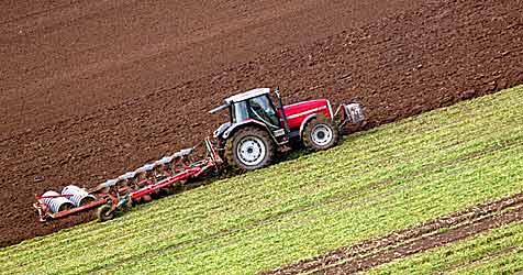 Grünlandbauern macht Trockenheit schwer zu schaffen (Bild: dpa/dpaweb/dpa/Rainer Jensen)