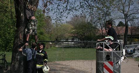 Feuerwehr muss Fußballer aus Baum retten (Bild: www.feuerwehr-krems.at)
