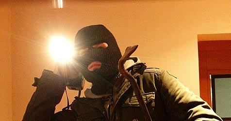 Einbrecher dringen in Kremser Firma ein (Bild: APA/HELMUT FOHRINGER)