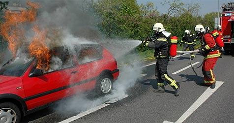 VW Golf brannte lichterloh (Bild: FF Wiener Neudorf)