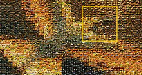 """Beeindruckende Bilder als """"Endlos-Mosaik"""""""