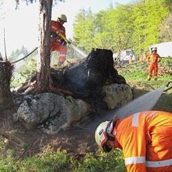 Feuerwehr zu Wald- und Kellerbrand ausgerückt (Bild: FF Bad Goisern)