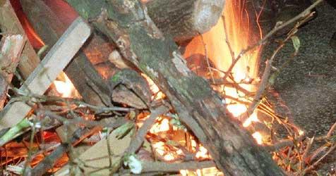 Kleinkind stürzt im Mostviertel in offene Feuerstelle (Bild: Gero Breloer/gb)