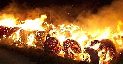 130 Strohballen in Flammen aufgegangen (Bild: FF Wampersdorf)