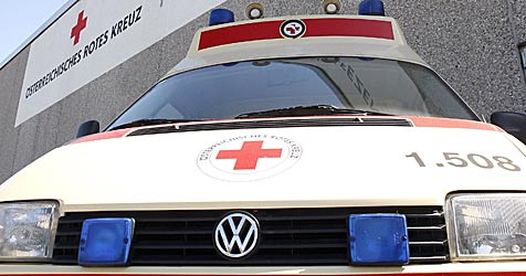 Heeresbediensteter stürzt mit Pkw über Böschung (Bild: APA/Herbert Pfarrhofer)