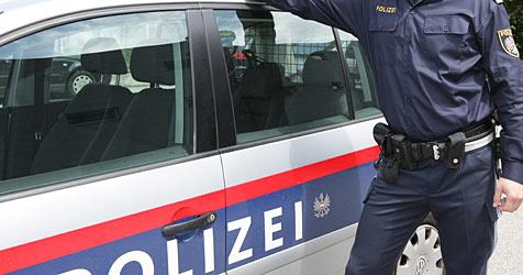 Polizisten fingen entlaufenen Hund auf der A10 ein (Bild: Christian Koller)