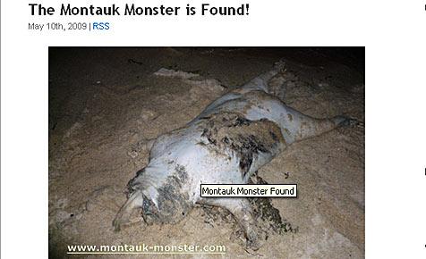 """""""Montauk-Monster 2.0"""" an US-Küste angespült (Bild: www.montauk-monster.com)"""