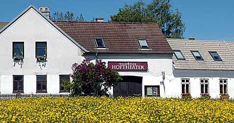 Wald4tler Hoftheater geht in 23. Saison (Bild: APA/REINHOLD HARTL-GOBL)