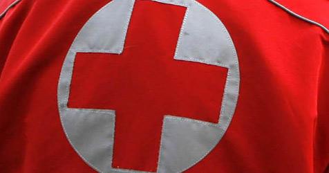 Plus an freiwilligen Helfern beim Roten Kreuz (Bild: apa/Harald Schneider)