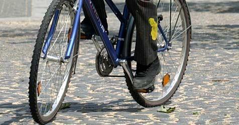 Radfahrer will Hund ausweichen und verletzt sich schwer (Bild: dpa/dpaweb/dpa/Matthias Hiekel)