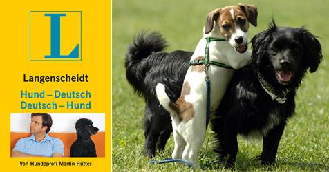 Warum Hunde den Postler beißen (Bild: Lagenscheidt KG (1), Maurizio Gambarini dpa/lno (1))