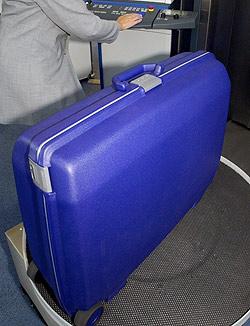 Koffer mit Festspielgarderobe gestohlen (Bild: dpa/dpaweb/dpa/Stephan Jansen)