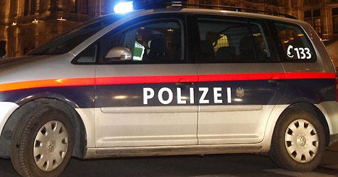 Fleissige Schüler sorgen für Polizeieinsatz (Bild: APA/Herbert P. Oczeret)
