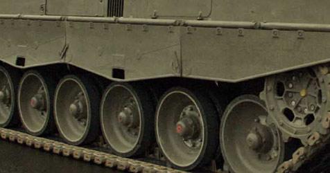 28 Soldaten bei Großübung  in Allentsteig erkrankt (Bild: Reinhard Holl)