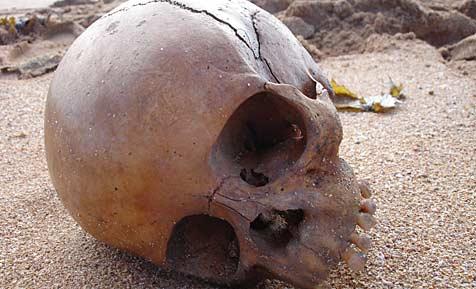 Totenschädel in Australien angespült